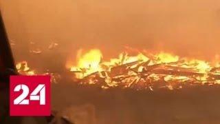 Смотреть видео Сибирь горит: лесные пожары охватили уже 3 миллиона гектаров - Россия 24 онлайн