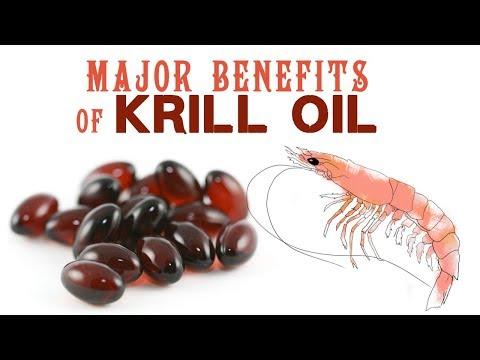 major-benefits-of-krill-oil