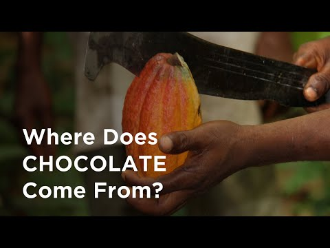 the-science-of-making-chocolate