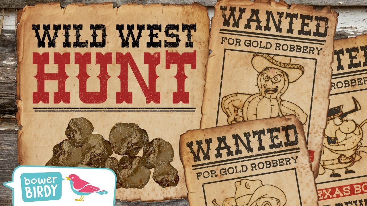 🤠 Wild West Gold Rush💰