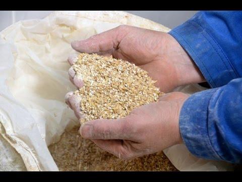 Пивоварня это не только пиво но и дробина для скота. Фермер Александр Москвин.