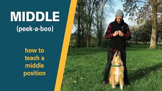 Puppy Trick Training | How to teach a Dog 'Middle' / 'Peek-A-Boo' | Full Training Tutorial