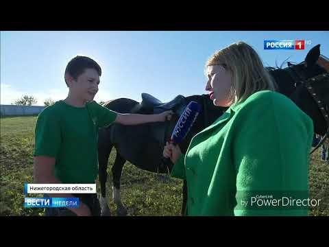 Большое Рыбушкино Нижегородская область (Вести от 17.06.19)
