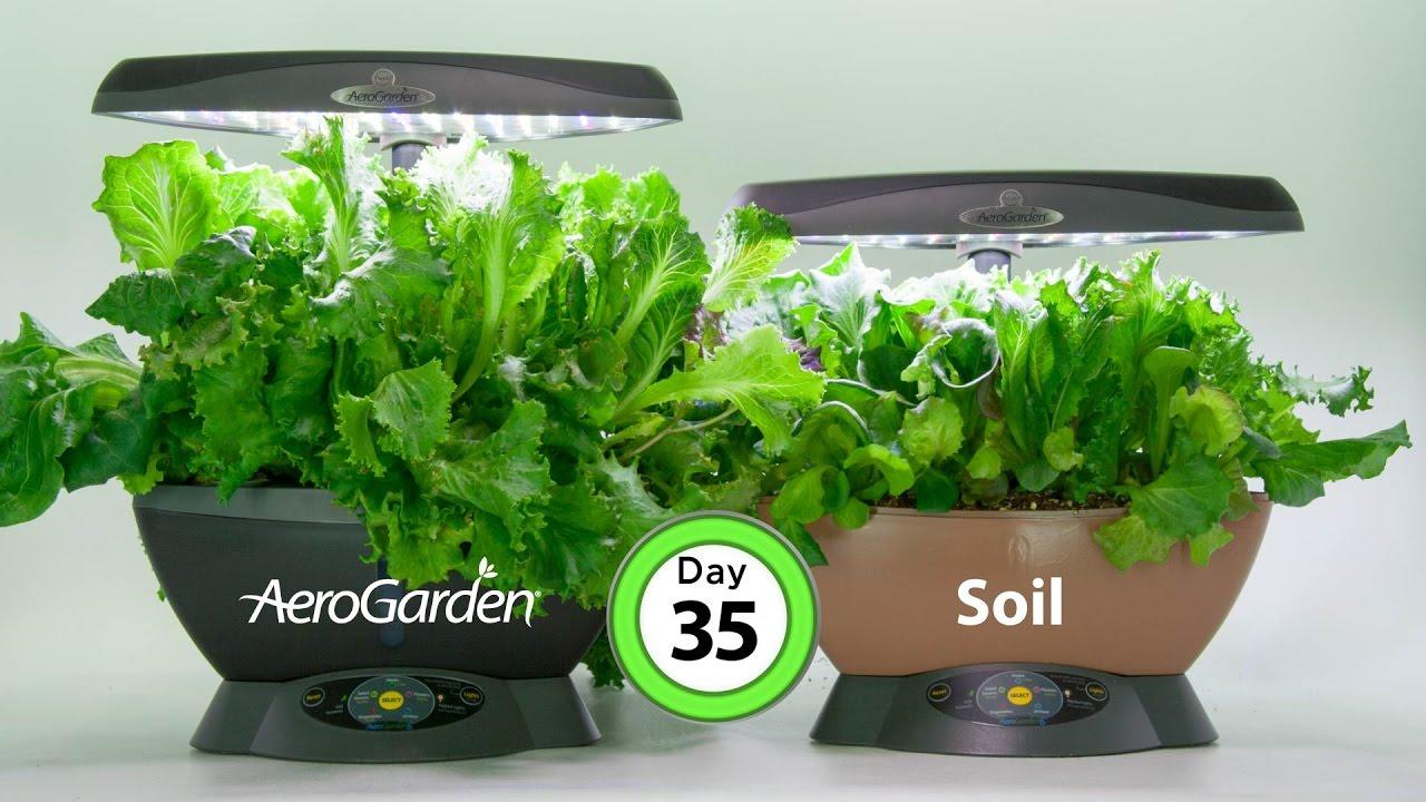 The Smart Countertop Garden Aerogarden Classic 6 Youtube