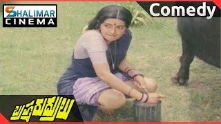 Brahma Rudrulu Movie || Venkatesh & Rajini Comedy  || Venkatesh, ANR, Rajini || Shalimarcinema