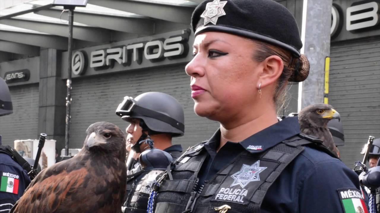 Contingente de la Policía Federal en el 206 Aniversario ...
