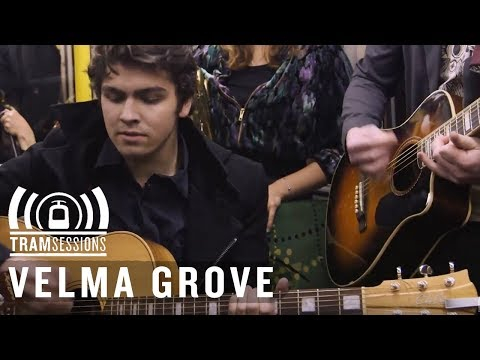 Velma Grove - Liquor Store | Tram Sessions