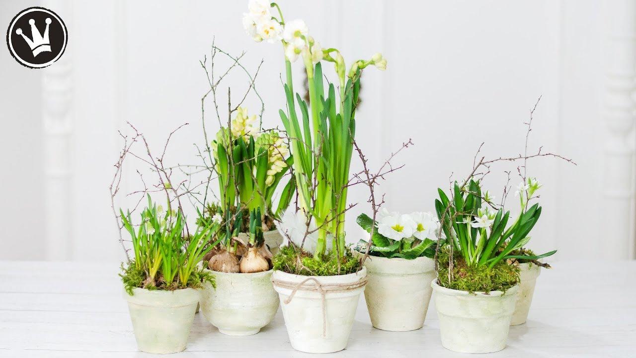 DIY - Frühlingsdeko | Blumentopf im Shabby Chic selber machen | Upcycling -  Blumentopf patinieren