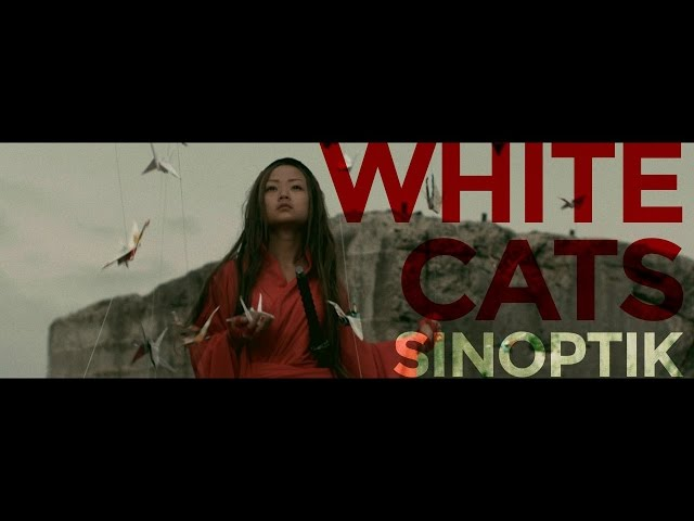 SINOPTIK - White Cats | Official Music Video
