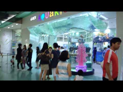 A Look In And Out Of Coex Mall 코엑스몰