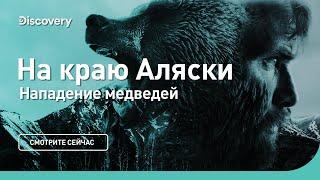 Нападение медведей | На краю Аляски | Discovery