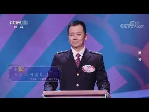 [中国诗词大会]彭敏对决秦鹏 飞花令:风| CCTV