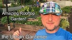Episode 36 - Amazing Rooftop Garden! | Noble Rot | Portland, Oregon
