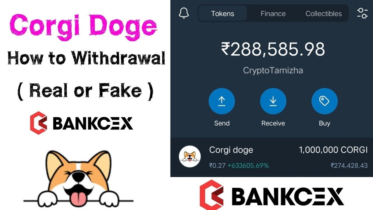 Corgi Doge - How To Withdrawal Corgi Doge in Trust Wallet | Real or Fake | Free Airdrop