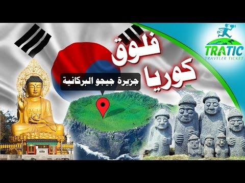 TraTic: Vlog Korea - Jeju Volcanic Island   فلوق كوريا - جزيرة جيجو البركانية
