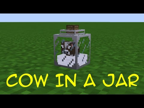 Cow in a Jar