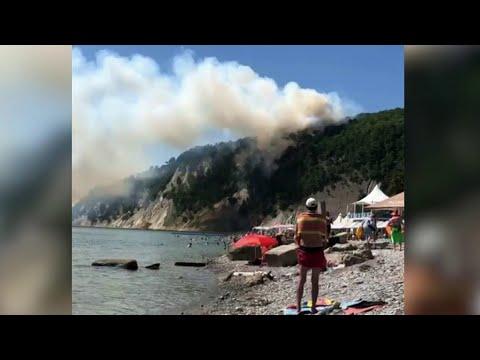 Крупный пожар на Кубани ликвидирован.
