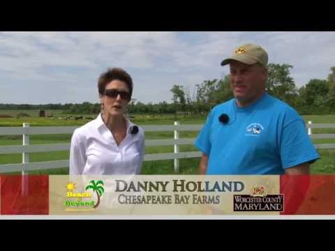 """'Chesapeake Bay Farms' for Worcester County Tourism and """"Beach & Beyond"""""""