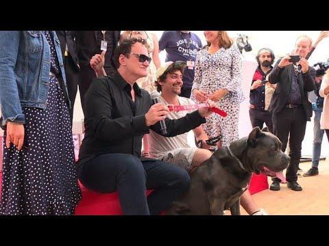 AFP: Tarantino accepte le 'Palm Dog' pour la star canine 'Brandy'