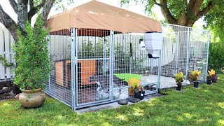 The Ultimate Dog Kennel System @ Caona Bully Kennels  2020 Yard Tour, Kennel Setups and Upgrades
