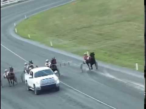 Harness Racing Fredericton, NB, Sep.09,  2017