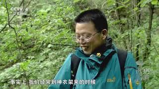 [远方的家]世界遗产在中国 植物基因库  CCTV中文国际