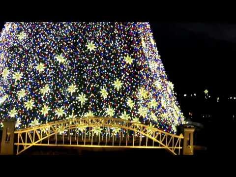 Model Trains At The National Christmas Tree 2016 - Washington DC - 12/27/2016 .