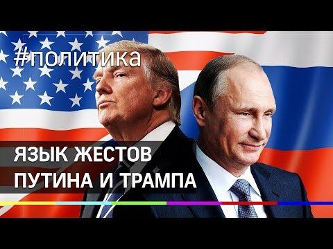 Язык жестов: рукопожатие Путина и Трампа