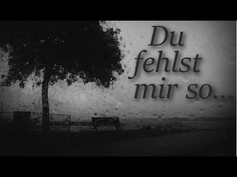 Wise Guys - Du fehlst mir so (Cover)