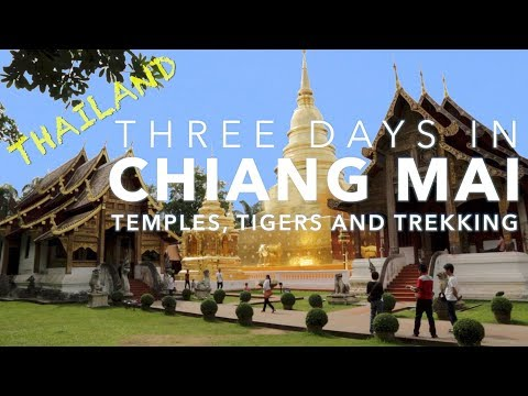 Three Days In Chiang Mai - Temples, Tigers And Trekking