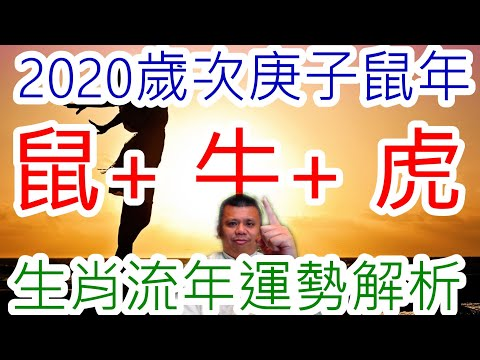2020年生肖流年屬鼠屬牛屬虎運勢解析!你是其中一個嗎?快來看看你的2020年是否能旺一整年!