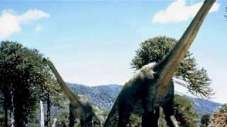 Fossils of largest dinosaur found in Argentina