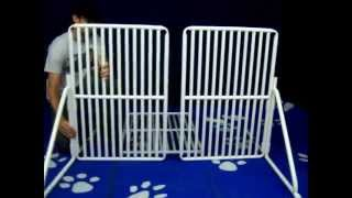 Free Standing Pet Gate : Assembly Video By Rover Company