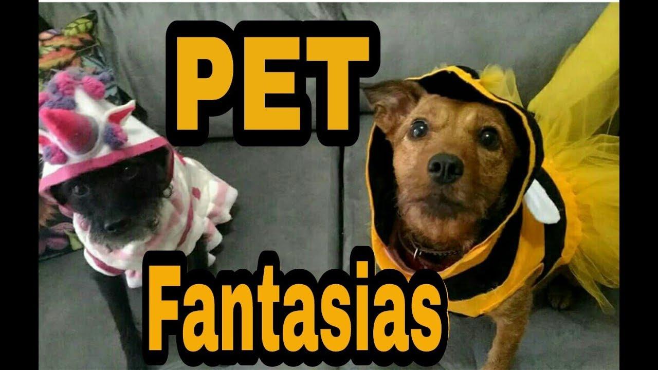 bedd117f6fa38c DIY- como fazer fantasias para cachorro com roupinhas velhas
