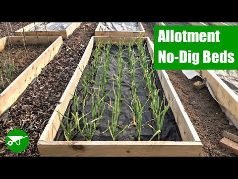 How to Make No-Dig Beds
