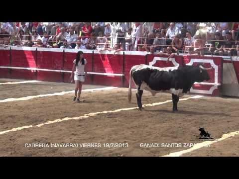 CADREITA (NAVARRA) KIRA Y SU PALOMO (VIERNES 19 JULIO 2013) SANTOS ZAPATERIA