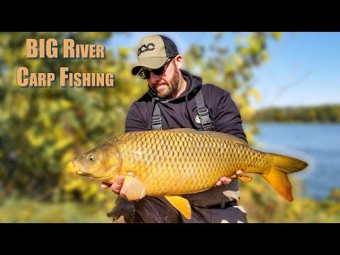 Big River Carp Fishing
