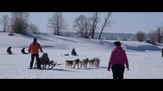 Третье Катание особенных детей кайтами, снегоходами на ватрушках и в упряжках хаски
