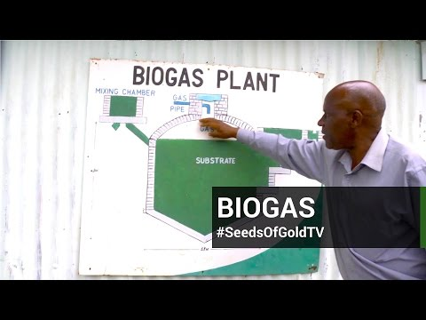 Bio Gas - Season 1 Episode 9