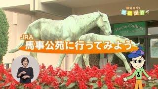 【世田谷区】JRA馬事公苑に行ってみよう!~東京2020オリンピック・パラリンピックの馬術競技開催にむけて