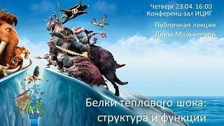 Дина Малькеева