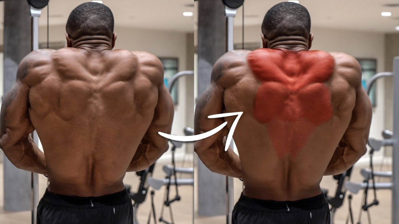 HOW TO HIGHLIGHT MUSCLES IN VIDEOS