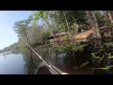 Fishing The Waccamaw River