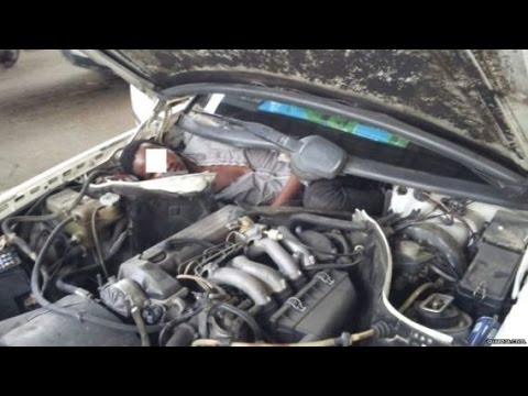 Spain finds Guinea migrant hidden behind car engine photos