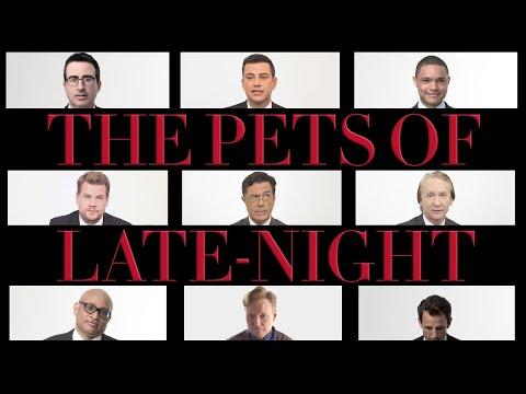 Stephen Colbert, Conan