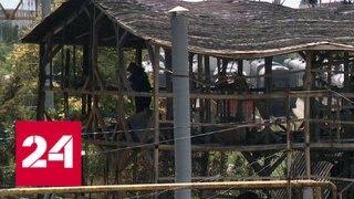 Пожароопасный сочинский самострой: под подозрением - 72 чиновника - Россия 24