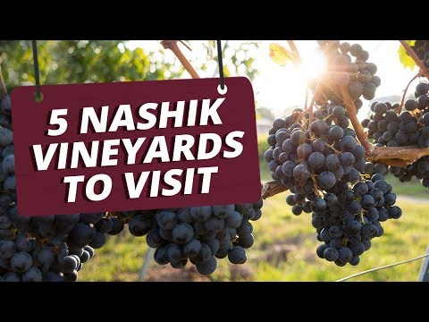 5 Nashik Vineyards To Visit