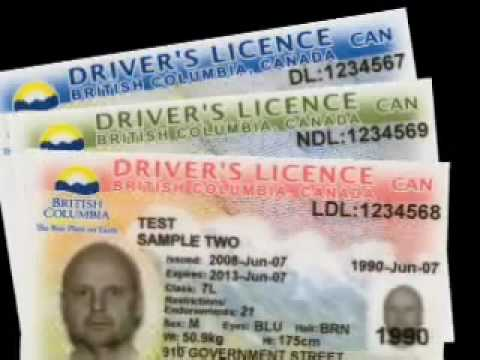 Identification - Driver's 's Cards New Youtube B mp4 c Licence And