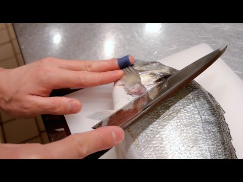 GRAPHIC - How To Fillet A Fish - Sea Bream - Japanese Technique - クロダイのさばき方