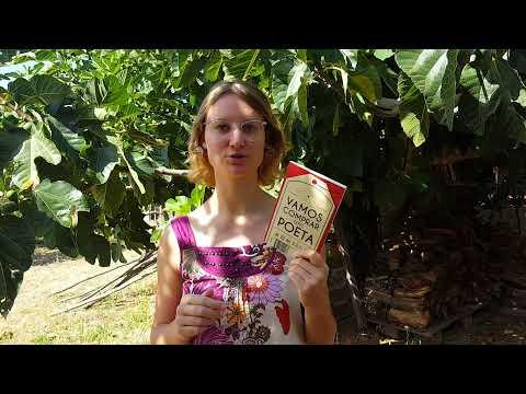 Sugestão de Leitura | Vamos comprar um poeta, de Afonso Cruz